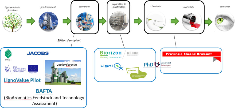 Schematic representation of the wood/lignin-to-aromatics value chain including some of the national and European projects in which VITO is involved