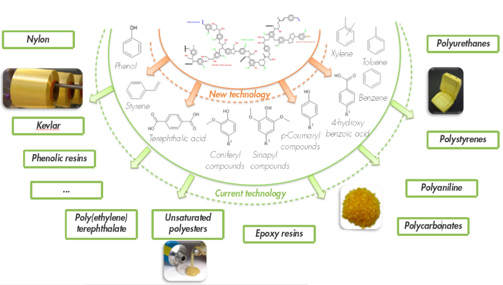 Valuable bio-based aromatic building blocks and polymers obtainable from lignin (adapted from Isikgor et al.)